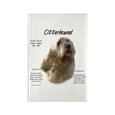 Otterhound Rectangle Magnet