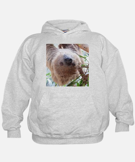 cute sloth in the tree Sweatshirt