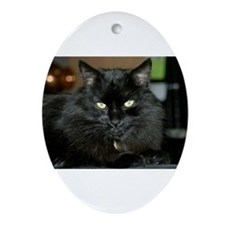 Charlie the black Maine Coon Cat Ornament (Oval)
