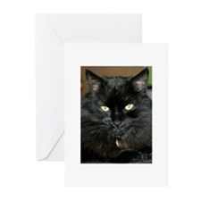 Charlie the black Maine Coon Cat Greeting Cards (P
