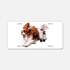 Cavalier Running- Blenheim Aluminum License Plate