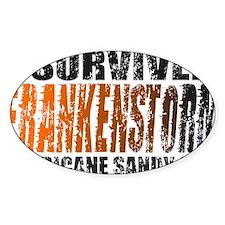FRANKENSTORM Hurricane Sandy 2012 Distressed Stick
