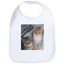 Orange Tabby Cat Bib