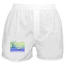 IcePenguin Boxer Shorts