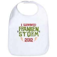 I Survived Frankenstorm Bib