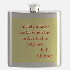 skinner5.jpg Flask