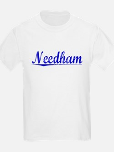 Needham, Blue, Aged T-Shirt