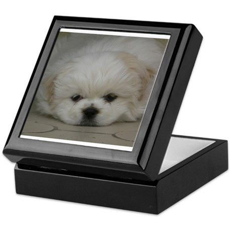 Pekingese Puppy Keepsake Box