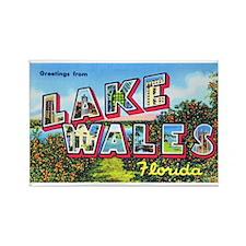 Lake Wales Florida Greetings Rectangle Magnet
