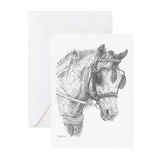 Carriage Horse Greeting Cards (Pk of 10)
