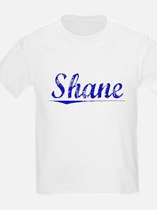 Shane, Blue, Aged T-Shirt