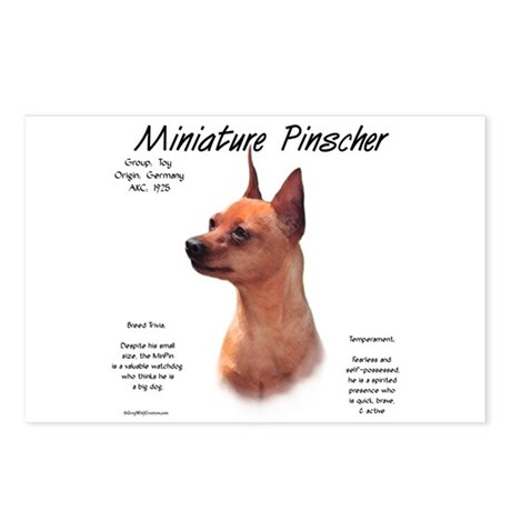 Red Miniature Pinscher Postcards (Package of 8)
