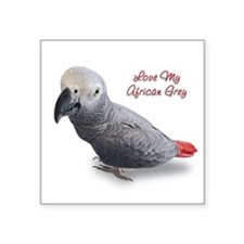 """African Grey.png Square Sticker 3"""" x 3"""""""