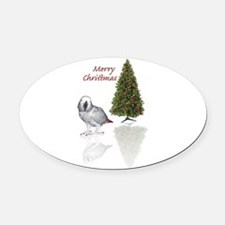 african grey christmas Oval Car Magnet