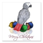 african grey christmas Square Car Magnet 3