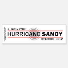 I Survived Hurricane Sandy Sticker (Bumper)
