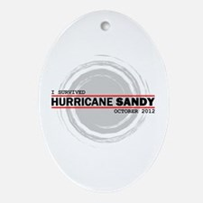I Survived Hurricane Sandy Ornament (Oval)