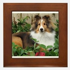 Strawberry Patch Framed Tile