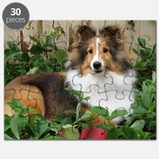 Strawberry Patch Puzzle