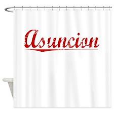 Asuncion, Vintage Red Shower Curtain