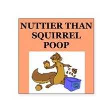 "nutty squirrel poop Square Sticker 3"" x 3"""