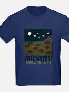 Yellowstone Park Night Sky T