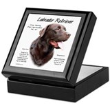 Chocolate labrador retriever Keepsake Boxes