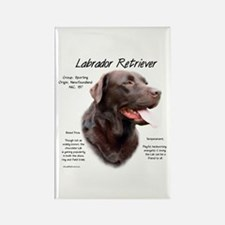 Chocolate Lab Rectangle Magnet