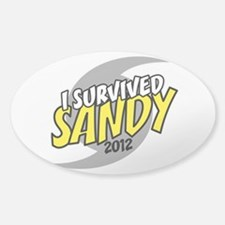 I Survived SANDY Decal