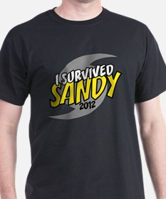 I Survived SANDY T-Shirt