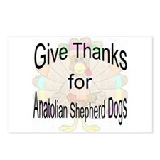 Thanks for Anatolian Shepherd Postcards (Package o
