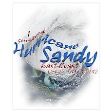 Hurricane Sandy Survivor: Wall Art Poster