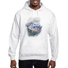 Hurricane Sandy Survivor: Hoodie
