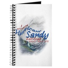 Hurricane Sandy Survivor: Journal