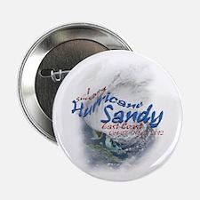 """Hurricane Sandy Survivor: 2.25"""" Button"""