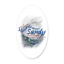 Hurricane Sandy Survivor: Oval Car Magnet
