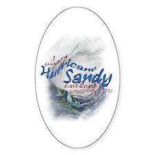 Hurricane Sandy Survivor: Decal