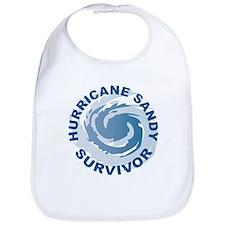 Hurricane Sandy Survivor 2012 Bib