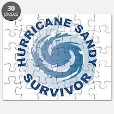 Hurricane Sandy Survivor 2012 Puzzle