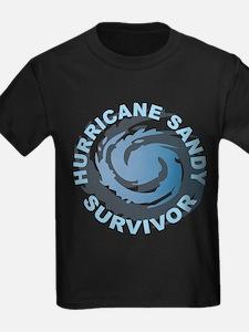 Hurricane Sandy Survivor 2012 T
