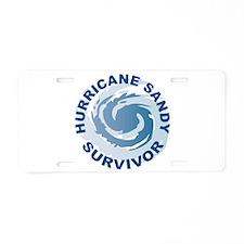 Hurricane Sandy Survivor 2012 Aluminum License Pla