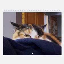 Calico Kitty Cat Wall Calendar