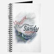 Frankenstorm Sandy: Journal