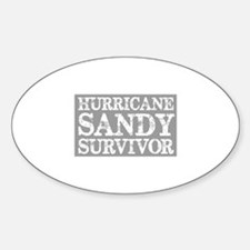 Hurricane Sandy Survivor Decal