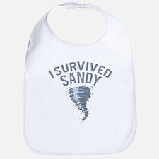 I Survived Hurricane Sandy Bib
