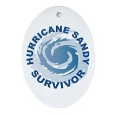 Hurricane Sandy Survivor 2012 Ornament (Oval)
