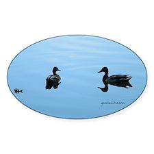 Duck romance Decal
