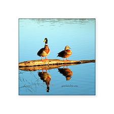 "Ducks at sunset Square Sticker 3"" x 3"""