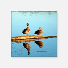 "Ducks at sunset Square Sticker 3"" x 3"""