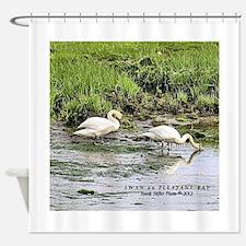 Swan on Pleasant Bay Shower Curtain